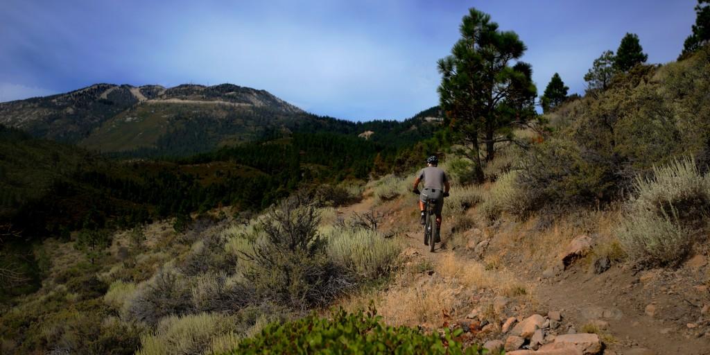 Mountain Biking Brown's Creek Trail